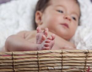 foto de bebés